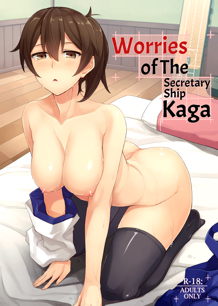 Worries of the Secretary Ship Kaga cover page